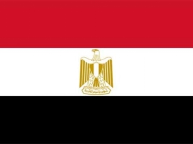 UNESCO calls on Egypt to investigate death of journalists