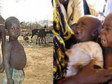 Somalia famine killed nearly 260,000 people, UN reports