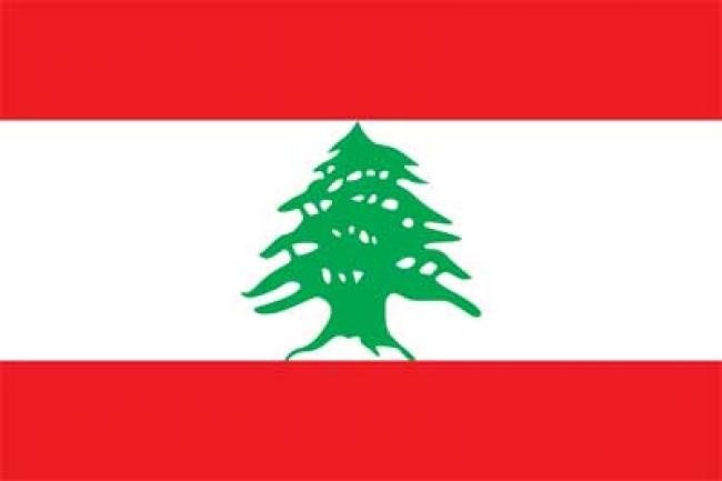 Lebanon: Ban deplores attack on armed forces in Sidon