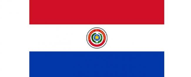 Ban welcomes peaceful general elections in Paraguay