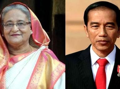 PM Hasina expresses sadness to Indonesia President
