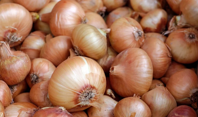 Onion prices decreases in Bangladesh