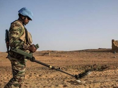 Deadly Mali attack to be investigated by UN rights experts