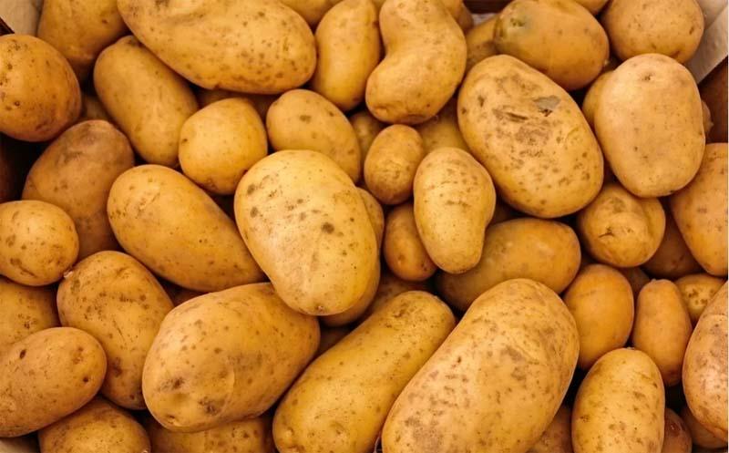Potato prices spike to 35 per kgs in Bangladesh