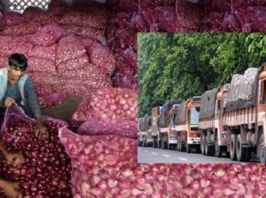 India allows export of onions after three and a half months