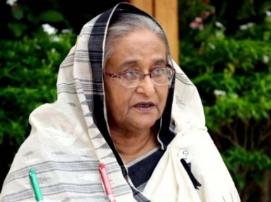 PM Hasina calls for concerted action to prevent the arbitrary use of antibiotics