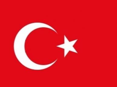 Turkey to raise Rohingya issue in UN