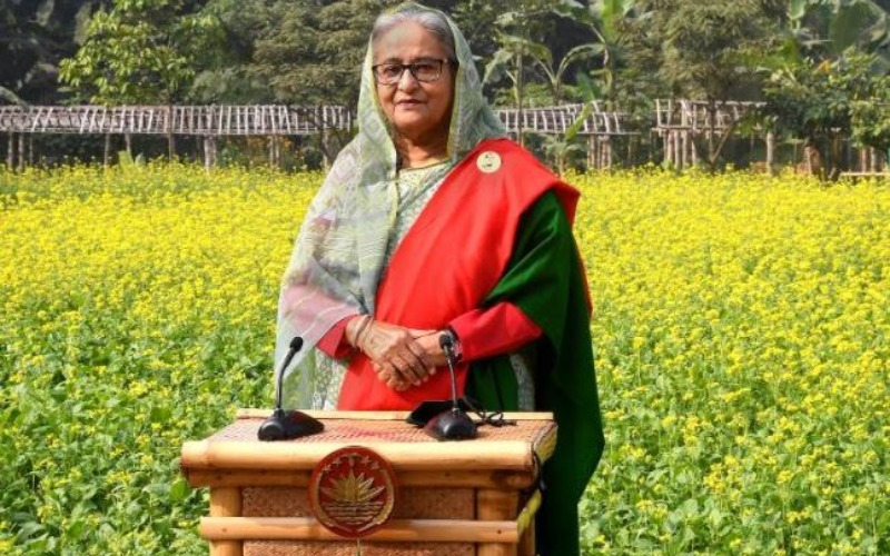 The allies of the defeated trying to confuse Muslims: Prime Minister Hasina