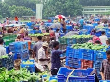 Surplus mangoes, no buyers in Baneshwar
