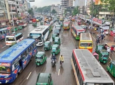 Public transport operates after 22 days