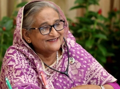 Take action against those delaying projects: PM Hasina