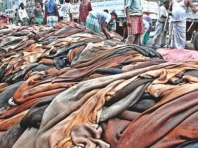 Government fixes price of raw hides of sacrificial animals