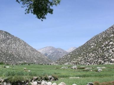 Afghanistan: Female doctor killed in Nangarhar IED blast