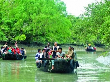 Sundarbans to open to tourists from September 1