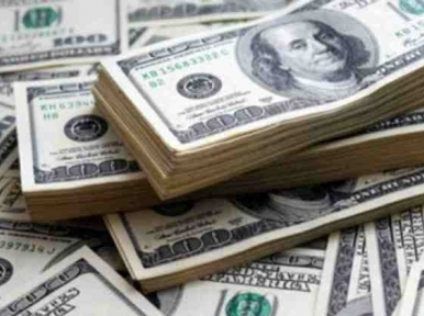Forex reserves cross $44 billion