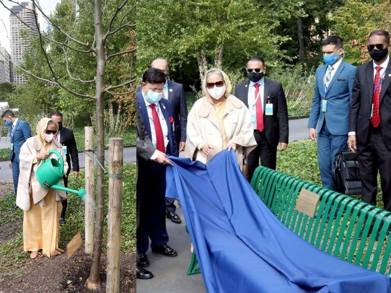 PM Hasina plants tree, dedicates bench at UN North Lawn garden to mark Mujib Borsho