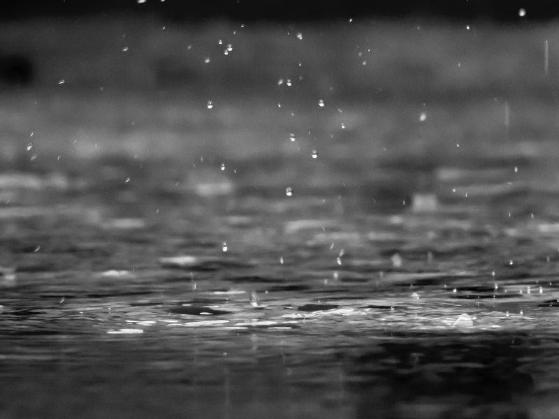 More rains expected as light pressure forms in sea again