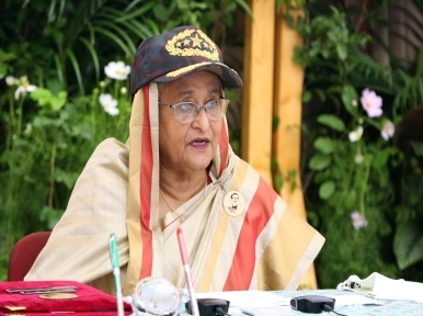 Sheikh Hasina attends programme via video conference