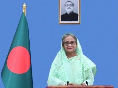 Sheikh Hasina attends international conference virtually